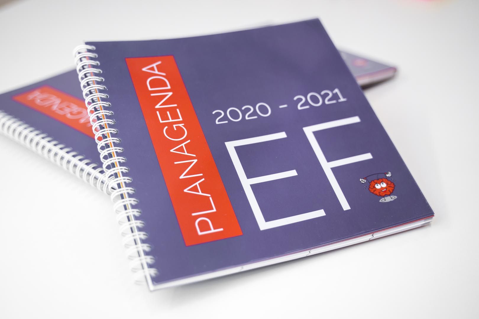 EF planagenda